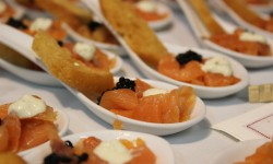 exquisiteces de salmon