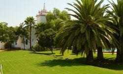 Atalaya Alta - Carmona (Sevilla)